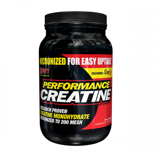 Performance Creatine 1200g